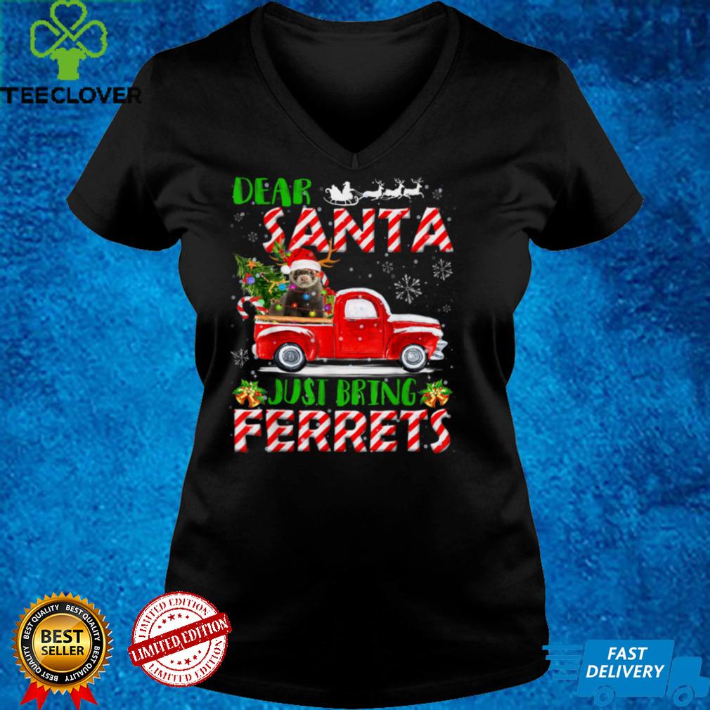 Dear Santa Just Bring Ferrets Santa Reindeer Farm Red Truck T Shirt